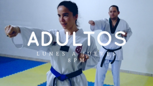 taekwondo para adultos